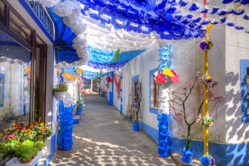 Rua do Zé das flores
